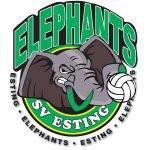 Esting Elephants